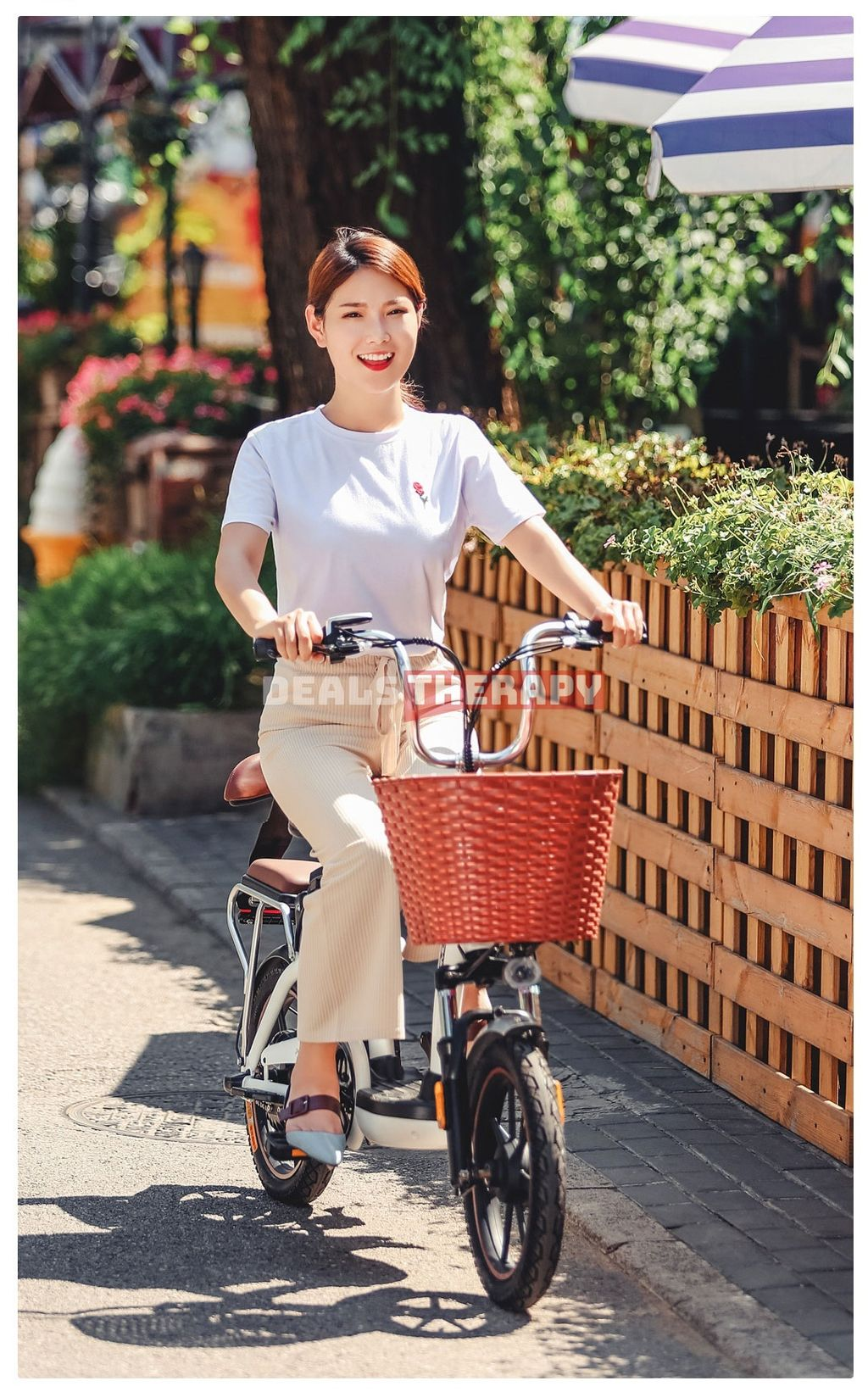 HIMO C16 Electric Bicycle