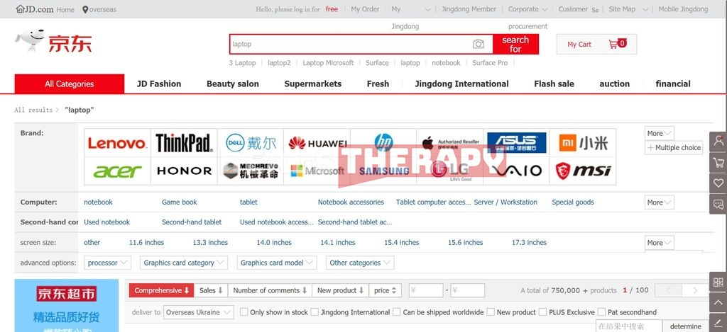 Online Shopping Guide JD.com: How to shop in this online store
