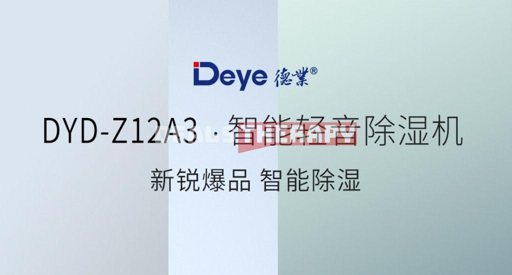 Deye DYD-Z12A3