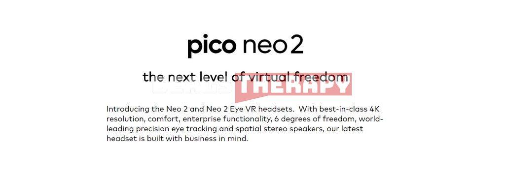Pico Neo 2