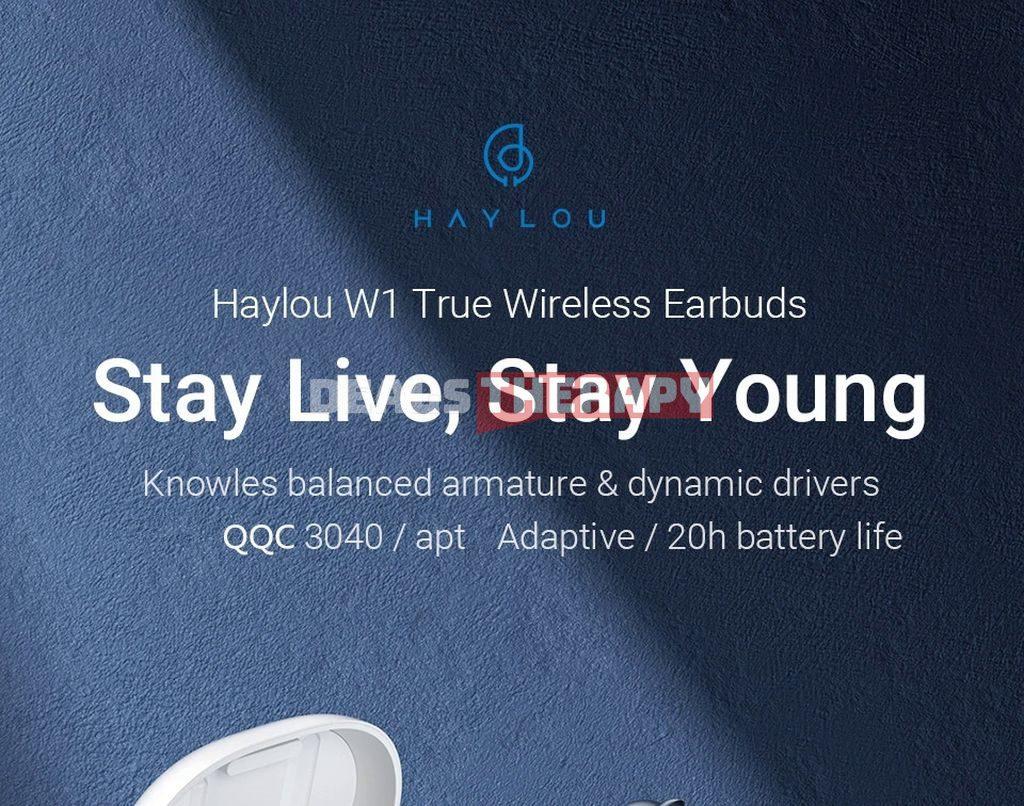 Haylou W1