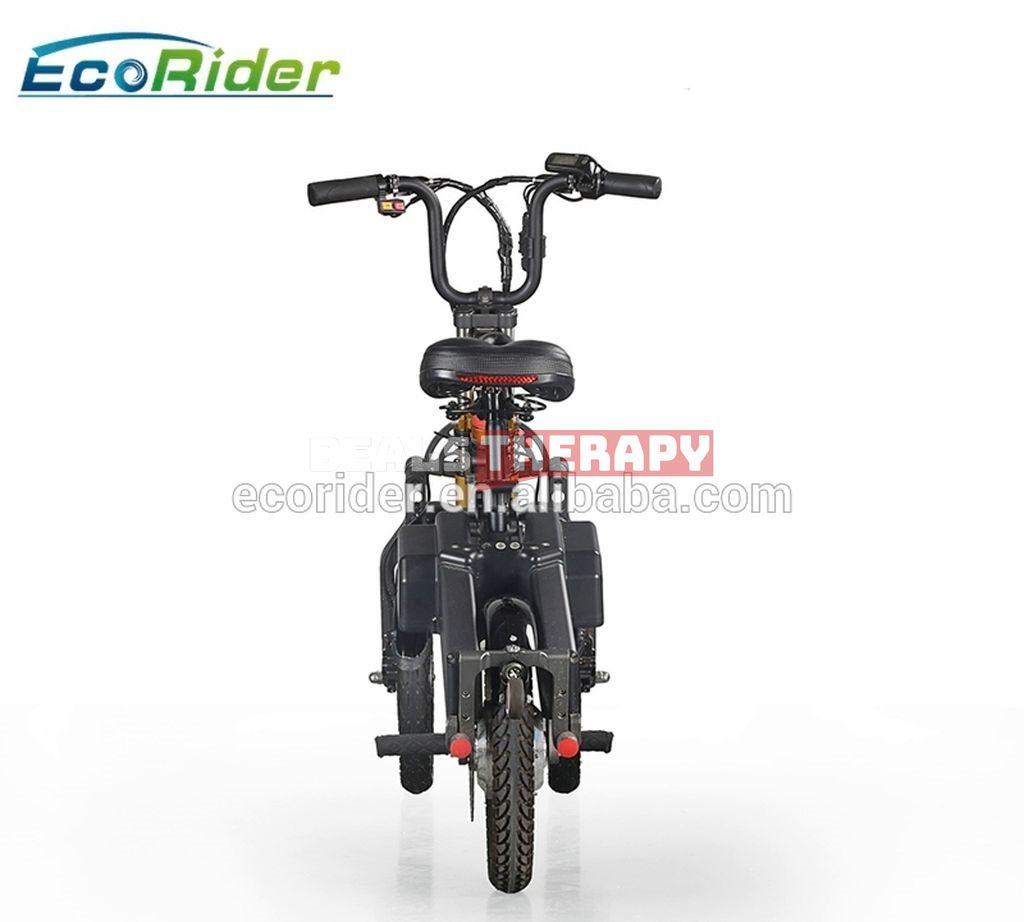 EcoRider E6-7